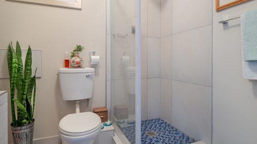 wc toilettes